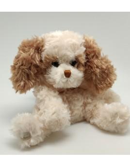 chien roux